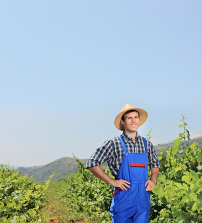 A young vintner posing with vineyard in the background, Macedonia photo