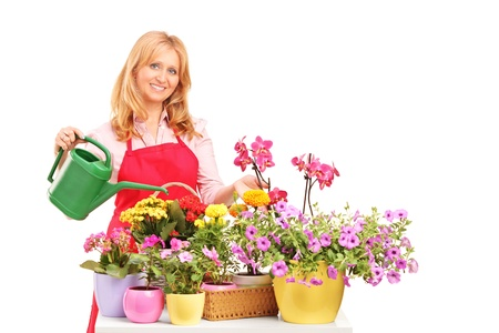 A beautiful female florist holding a can and watering flowers isolated on white background photo