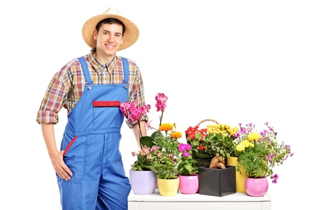 A male florist posing next to flowers isolated on white background Stock Photo - 14286219