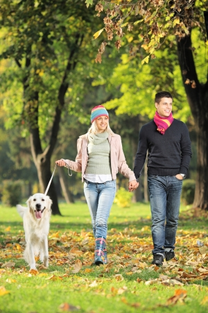 Young couple holding hands and walking a dog in a park photo