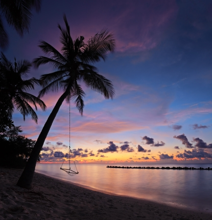 A view of a beach with palm trees and swing at sunset, Kuredu island, Maldives, Lhaviyani atoll photo