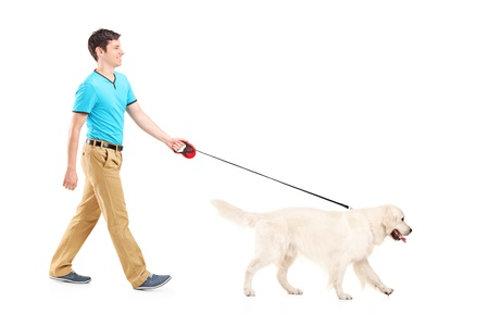 person walking: Full length portrait of a young man walking a dog, isolated on white background