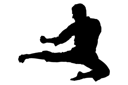A silhouette of a karate jump isolated on white background photo