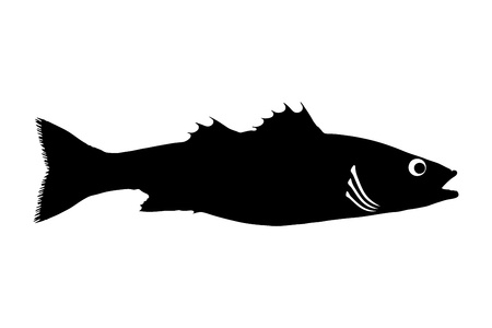 bass fish: Silhouette of a sea bass fish isolated on white background