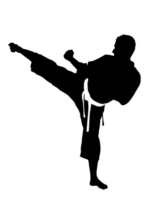 A silhouette of a karate man exercising against white background photo