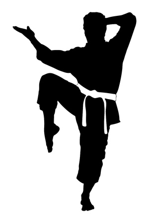 karate practice: A silhouette of a karate man exercising against white background
