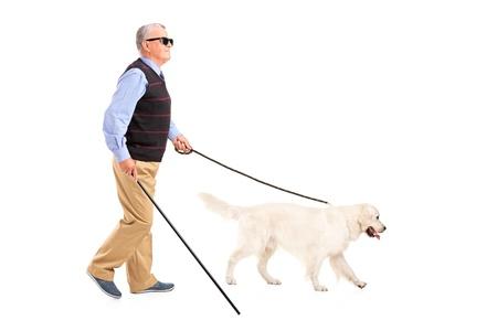 senioren wandelen: Volledige lengte portret van een blinde man beweegt met wandelstok en zijn hond, geïsoleerd op witte achtergrond