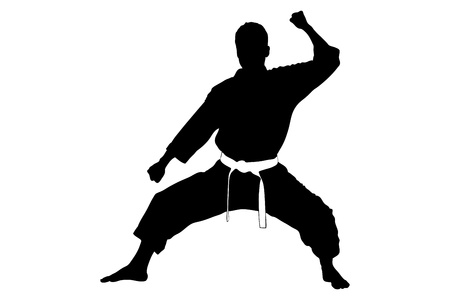 karate practice: A silhouette of a karate man isolated against white background
