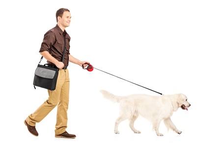 the walk: Full length portrait of a guy with shoulder bag walking a dog isolated on white background