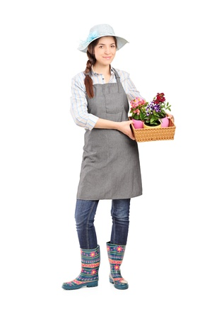 horticulturist: Full length portrait of a female gardener holding flower plants isolated on white background