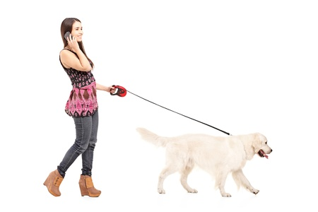 Full length portrait of a young female walking her dog and talking on a mobile phone isolated on white background photo