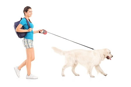 Full length portrait of a female student walking her dog isolated on white background photo