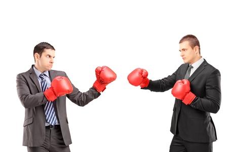 guantes de boxeo: Dos hombres de negocios j�venes con guantes de boxeo con una pelea aislada en el fondo blanco
