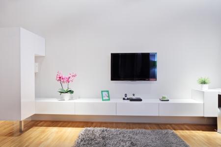 wall mounted: Shot of a modern minimal living room