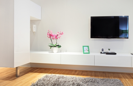 wall mounted: Shot of a modern living room