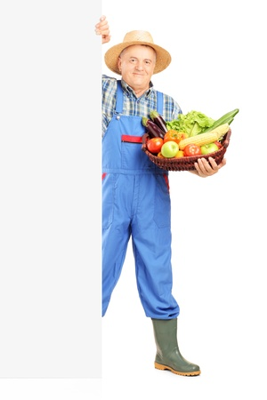 Full length portrait of a mature gardener holding a basket full of fruits and vegetables and posing on a blank panel, isolated on white  Stock Photo - 20396238