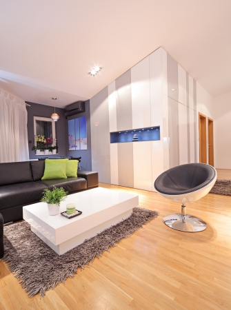 View of a living room in modern apartment photo