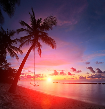 View of a beach with palm trees and swing at sunset, Kuredu island, Maldives, Lhaviyani atoll photo