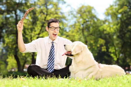 man dog: Male with tie and glasses sitting on a green grass and playing with labrador retriver in a park