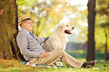 Senior gentleman and his Labrador retriever dog sitting on ground and posing in a park