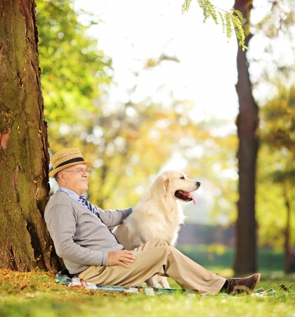 Senior gentleman and his Labrador retriever dog sitting on ground in a park, shot with a tilt and shift lens Stock Photo