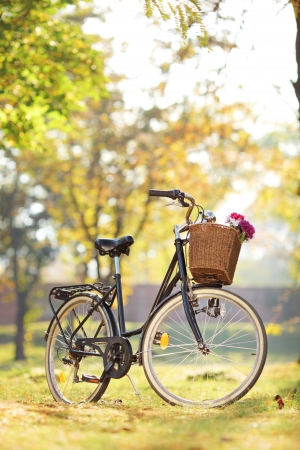 Woman's bike with basket and flowers in a park Stock Photo