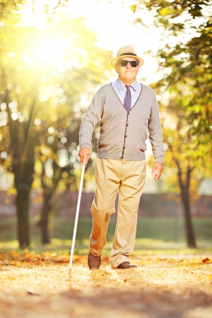 blind man: Blind mature man holding a stick and walking in a park on a sunny day