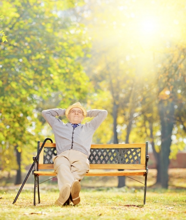 Relaxed senior gentleman sitting on a wooden bench in a park on a sunny day, shot with a tilt and shift lens Stock Photo