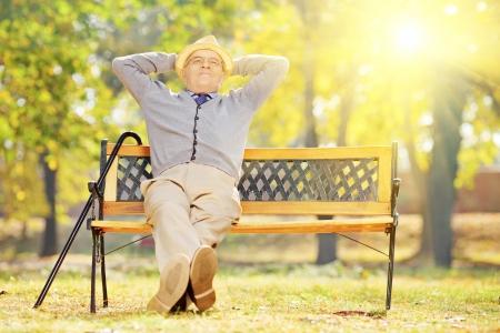 grandfather: Relajado señor mayor que se sienta en el banco de madera en un parque en un día soleado