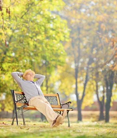 上級紳士木製のベンチに座っているとチルトとシフトのレンズで撮影した公園でリラックス