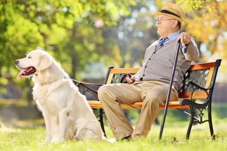 Senior gentleman seated on wooden bench with his dog relaxing in a park photo