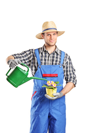 horticulturist: Male horticulturist watering a plant isolated on white background