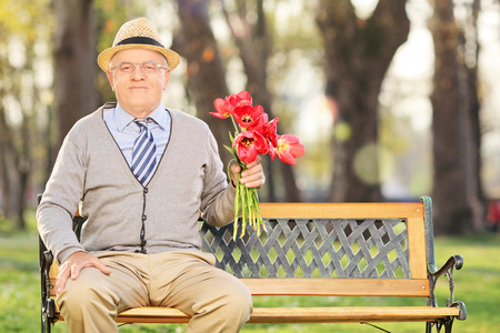 old man sitting: Senior man posing in park with red tulips seated on wooden bench