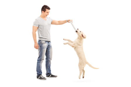man dog: Full length portrait of a young man holding a bone and playing with a puppy isolated Stock Photo