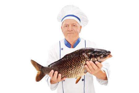 chub: Mature chef holding a fresh chub isolated on white background Stock Photo