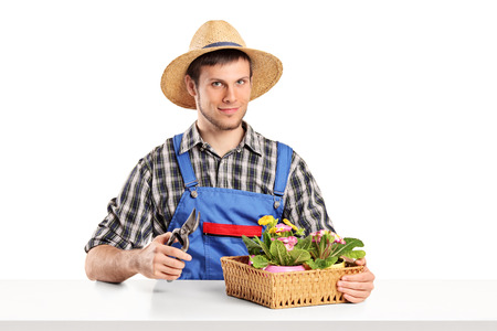 Male gardener sitting at a table with plants isolated on white background photo