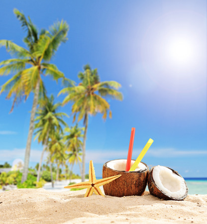 sunny cold days: Exotic cocktail in coconut cup on tropical beach on a sunny summer day shot with tilt and shift lens Stock Photo