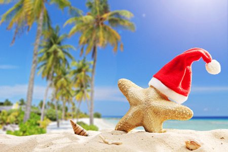 Starfish with Santa hat on it on a tropical beach on a hot summer day Stock Photo