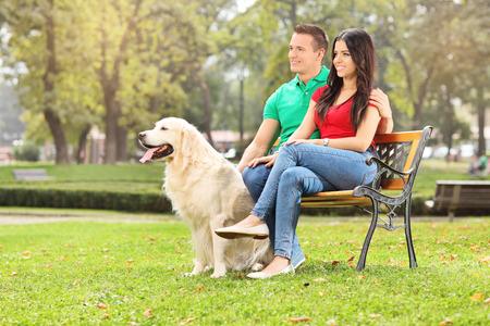 banc de parc: Jeune couple assis dans le parc avec un chien sur un banc de bois