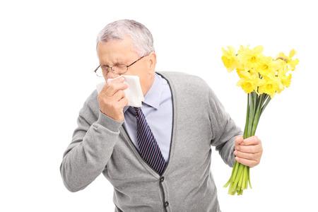 花にアレルギー反応を起こして、白い背景で隔離のナプキンにくしゃみシニアのスタジオ撮影 写真素材
