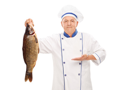 Mature chef holding a big freshwater fish and gesturing with his hand isolated on white background photo