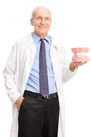 Vertical shot of a mature dentist holding a denture and looking at the camera isolated on white background