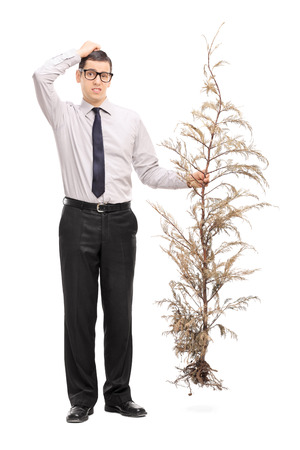 Full length portrait of a confused young guy holding a whole tree and scratching his head isolated on white background photo