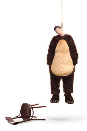 ahorcada: Retrato de cuerpo entero de un hombre muerto en un disfraz de oso que cuelga en una cuerda con silla caído a su lado aislado en fondo blanco