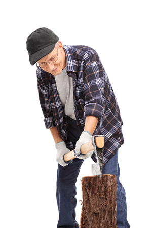 trunk: Vertical shot of a senior in a blue checkered shirt splitting a log with an axe isolated on white background