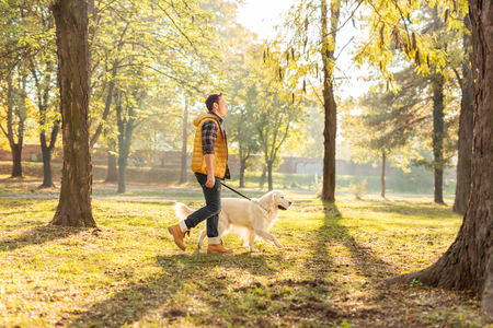Profile shot of a cheerful young man walking his dog in a park on a sunny autumn day