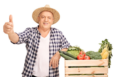 posing  agree: Mature farmer posing next to a crate full of vegetables and giving a thumb up isolated on white background