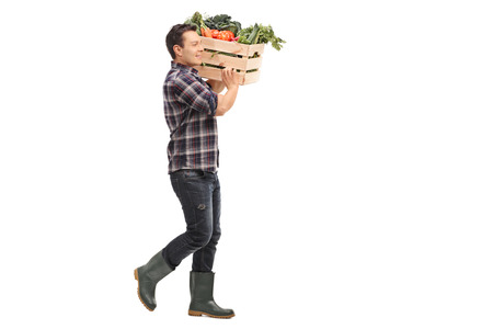 shoulder carrying: Full length profile shot of a young farmer carrying a crate with fresh vegetables on his shoulder isolated on white background