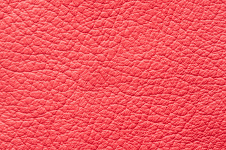 genuine leather: High quality red genuine leather pattern sample