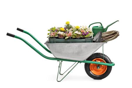 carretilla: Estudio tirado de una carretilla de metal lleno de equipos de jardinería y flores aisladas sobre fondo blanco Foto de archivo